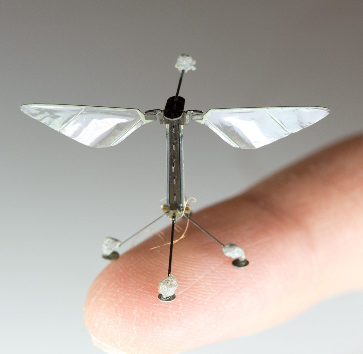 Robobee - Lightest Drone
